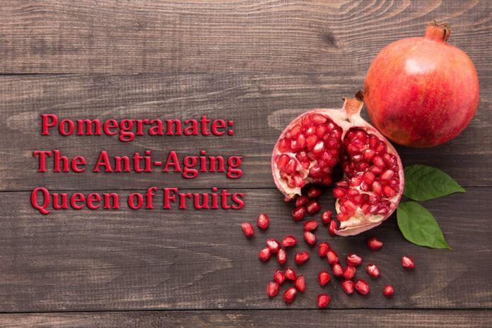 Anti aging, pomegranate, Urolithin A