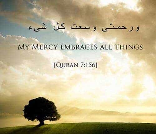 tolerance in Islam, verses about peace in quran