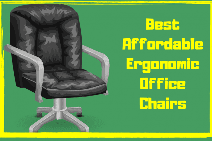 best affordable ergonomic office chair , ergonomic office chair with lumbar support